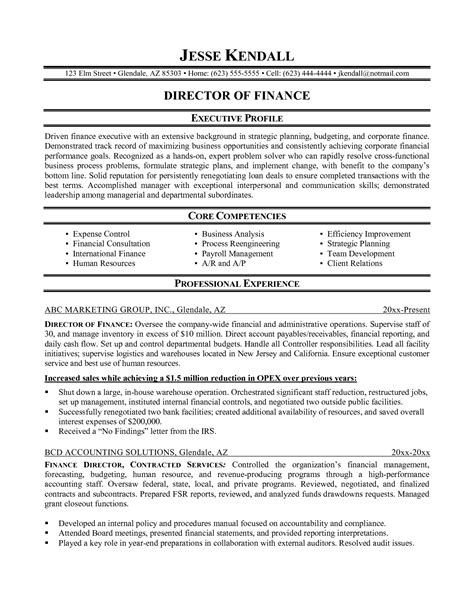 interesting professional resume exles finance in sle
