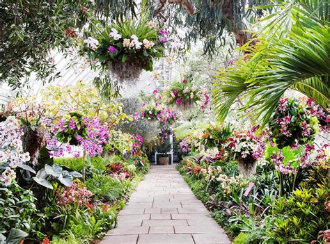 Go Inside The Gorgeous Orchid Show At The New York New York Botanical Garden Show