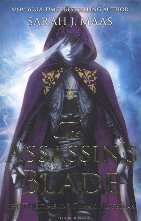 the assassins blade the 1408851989 the assassin s blade by maas sarah j 9781408851982 brownsbfs