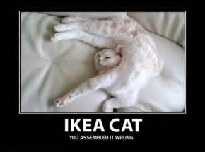 Ikea Instructions Meme - ikea quotes like success