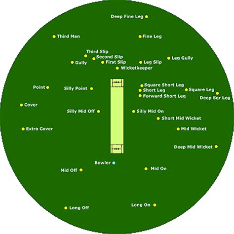 diagram of cricket fielding cricket field images ramani s