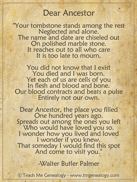 printable history quotes 17 best ideas about family tree quotes on pinterest