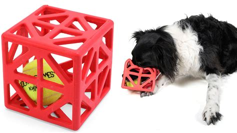 brain for dogs will this caged stimulate a s brain or just drive it gizmodo