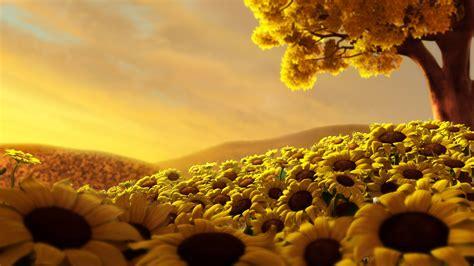 sunflower field wallpaper 755733
