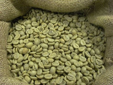 Coffee Consumers   Burundi A Nyarunazi Bourbon Unroasted Coffee Beans (Unroasted Green Beans, 10