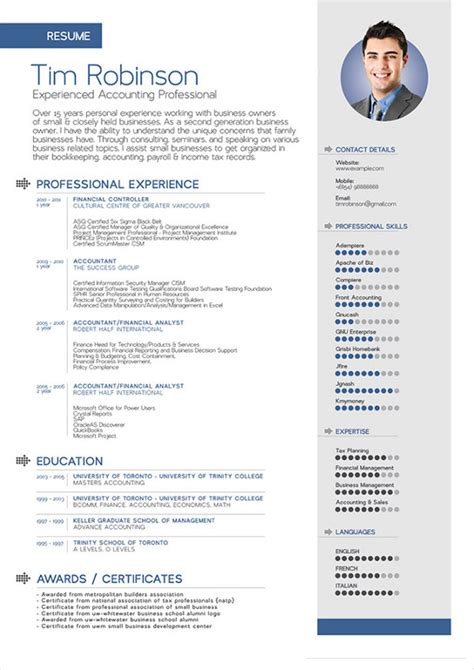 Resume Exles For Creative Professionals Resume Vectorilla Vector Images