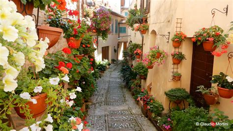 fiori per terrazzi balconi e terrazzi in fiore balconi in fiore nel centro