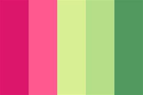 what color is watermelon watermelon juice color palette