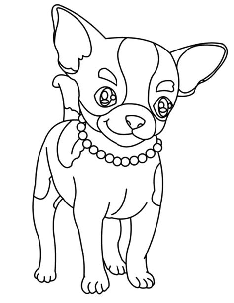 cute chihuahua coloring pages chihuahua outline coloring coloring pages
