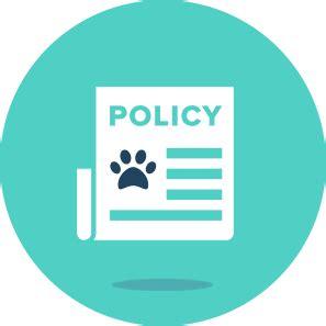 puppy insurance plans best pet insurance figo pet insurance plans for dogs and cats