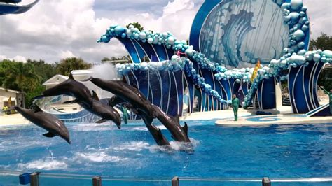 imagenes seaworld orlando f 233 rias em orlando parte 1 blog justini