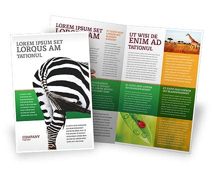 zoo brochure template zoo brochure template zebra brochure template design and