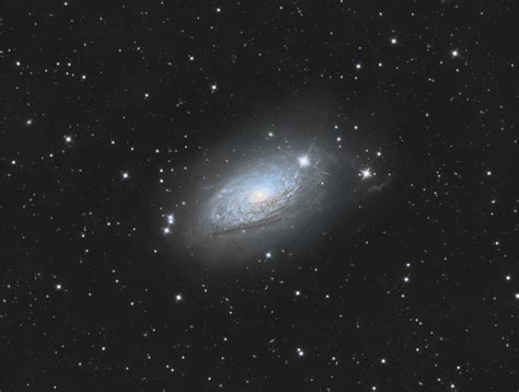 sunflower galaxy jeffrey jongmans astrophotography m63 sunflower galaxy