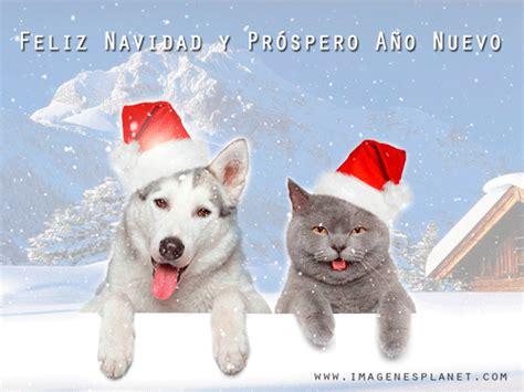 imagenes feliz navidad con perros perro y gato de pap 225 noel con nieve animada para navidad