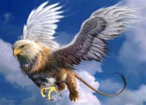 grifo heraldica el grifo animal mitol 243 gico