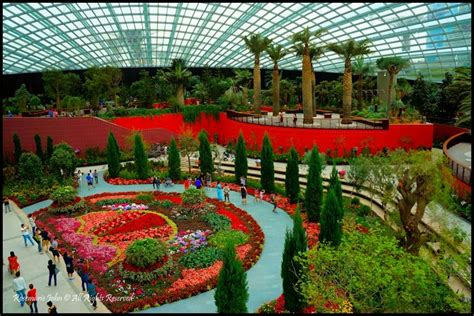 Gardens By The Bay Admission E Ticket flower dome gardens by the bay ticket thin