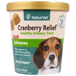 cranberry for dogs naturvet cranberry relief for dogs plus echinacea 60