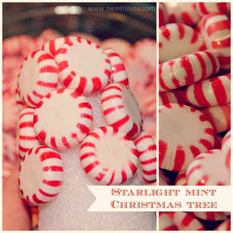starlight mint christmas tree directions entertaining decorating with price chopper holidayadvantedge sweet lil you