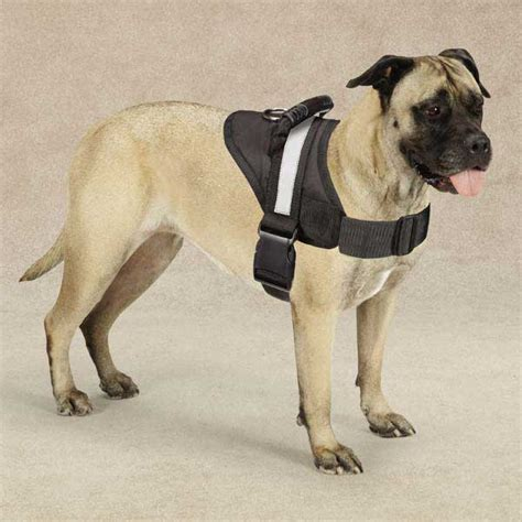 no pull harness for dogs hdp big soft adjustable no pull harness ebay