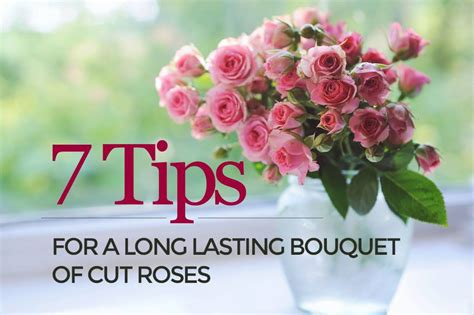 Make Roses Last Longer In Vase by How To Make Flowers In A Vase Last Longer Best Flower In