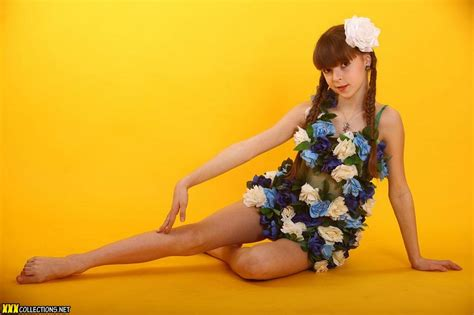 download tipi model sets silver stars eva flowers picture set 1 download