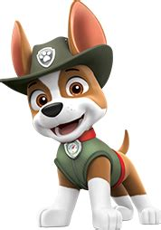 paw patrol breeds tracker paw patrol wiki fandom powered by wikia
