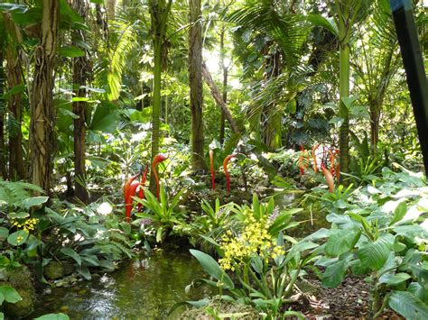 Miami Botanic Garden World S Botanic Gardens Contain A Third Of All Known Plant Species And Help Protect The Most