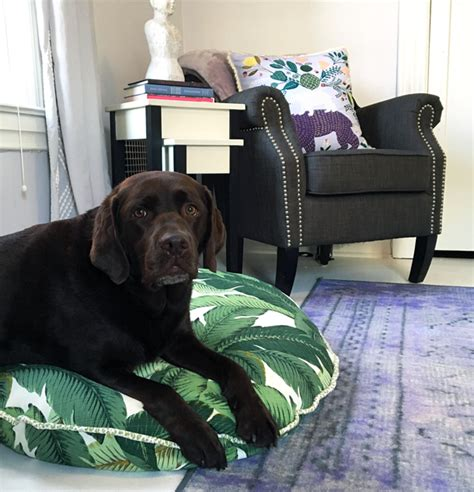how to make a dog bed out of pallets how to make a stylish dog bed cover wear wag repeat