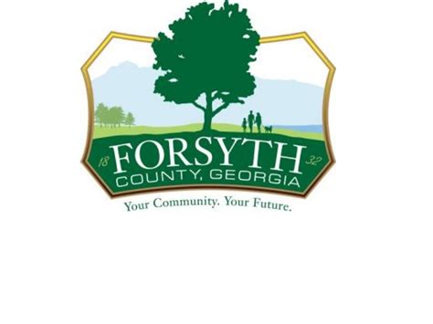 Forsyth County Property Tax Records Forsyth County Commission Intends To Leave Millage Rate Accesswdun