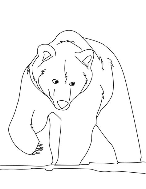 coloring pages bear free printable bear coloring pages for kids