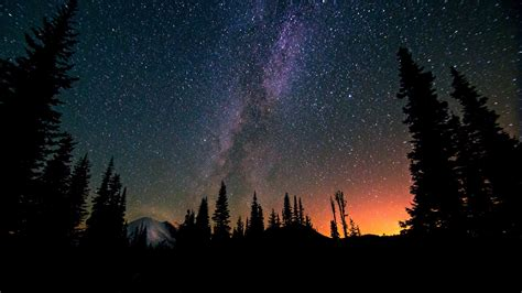 cool tree stars landscape trees way mountains forest nature exposure