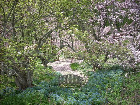 plants for backyard planting the wild garden 171 winterthur garden blog