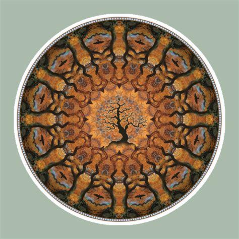 crowcircle tree mandala art