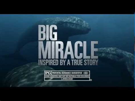 Miracle Tv Big Miracle Tv Spot Quot Amazing Quot Ted Danson Ravepad The Place To About Anything