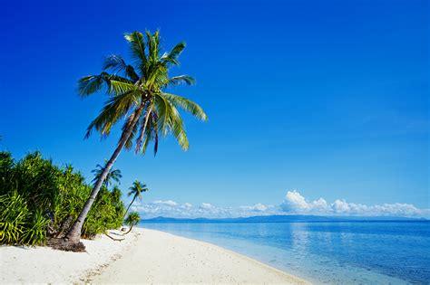 fotos philippinen strand meer natur palmen tropen k 252 ste