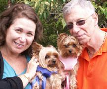 yorkie rescue lancaster pa events
