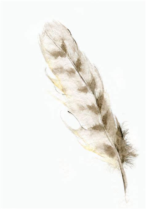 realistic feather tattoo designs 30 wonderful owl feather ideas designs