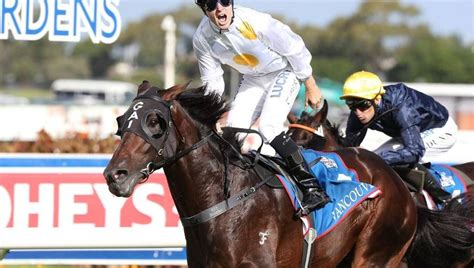 golden slipper winners and placegetters vancouver set on re writing history after golden slipper