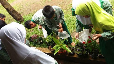 merawat tanaman hias  pot sekolah islam terpadu