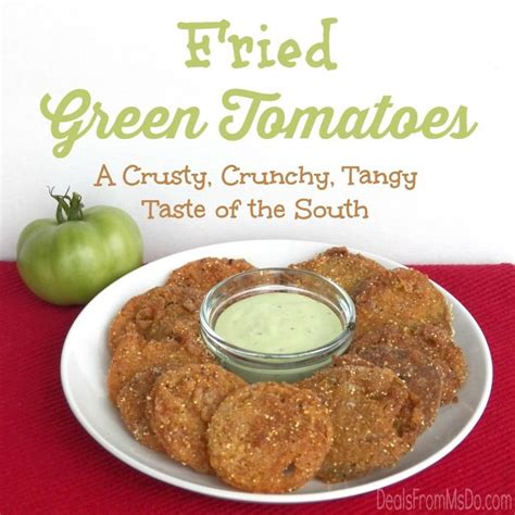 southern comfort gluten free fried green tomatoes can be gluten free too recipe an