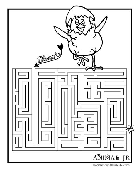 printable spring maze printable spring chick maze woo jr kids activities