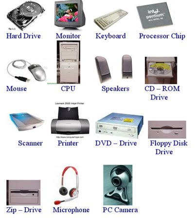 hardware, input, and output devices. thinglink