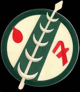 Skull Curtains 1000 Ideas About Boba Fett Symbol On Pinterest