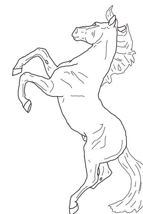 rearing horse coloring coloring pages
