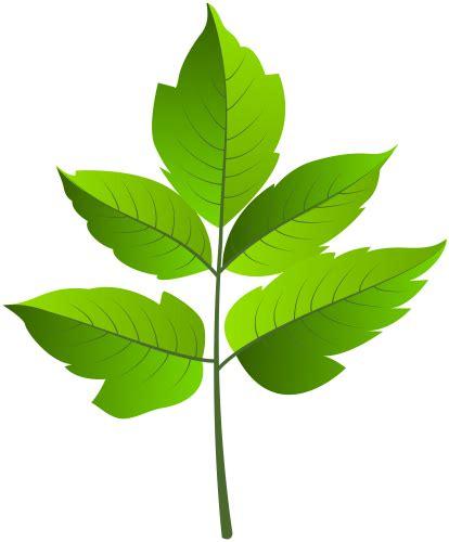 green leaves png image veerendra vijaya pinterest leaf green png clip ar clip art pinterest leaves and