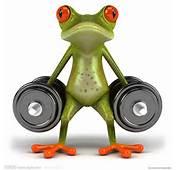 青蛙设计图  3D作品 3D设计 设计图库 昵图�nipiccom