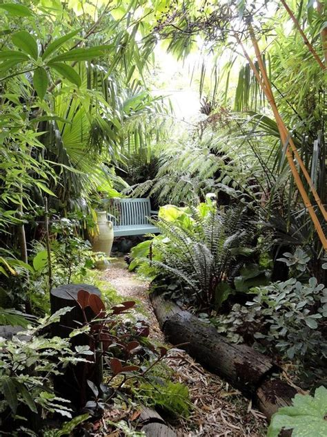 jungle garden backyard and landscaping pinterest