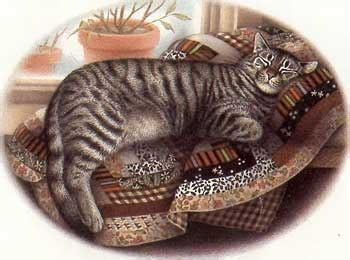 The Patchwork Cat - the patchwork cat illustrated by nicola bayley of