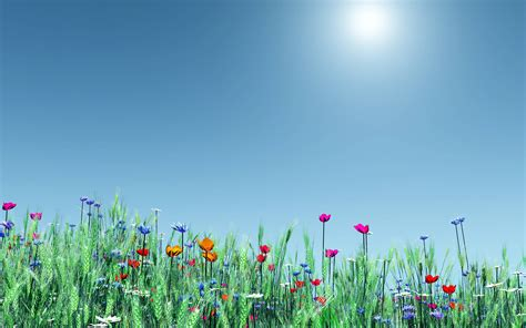 windows background themes spring spring theme wallpapers wallpaper cave
