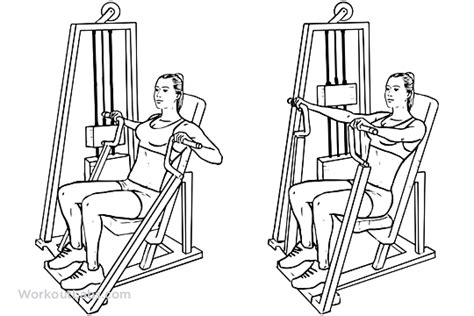 seated bench press machine hammer strength machine seated chest press workoutlabs